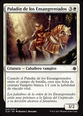 Paladín de los Ensangrentados / Paladin of the Bloodstained