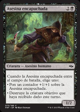Asesina encapuchada / Hooded Assassin