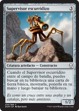 Supervisor escurridizo / Skittering Surveyor