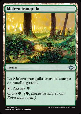 Maleza tranquila / Tranquil Thicket