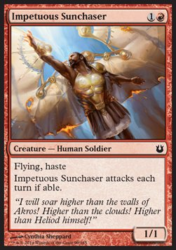 Cazador solar impetuoso / Impetuous Sunchaser