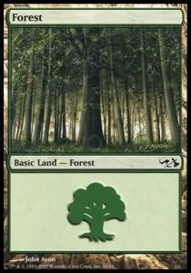 Forest Nº30