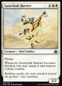 Agresor capaventus / Gustcloak Harrier