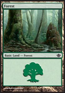 Forest Nº28