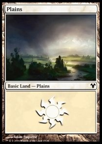 Plains Nº19
