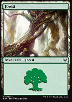 Forest Nº31