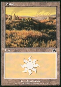Plains Nº333