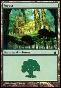 Forest Nº305
