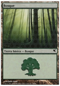 Bosque / Forest Nº24 v.1