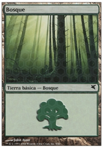 Forest Nº9