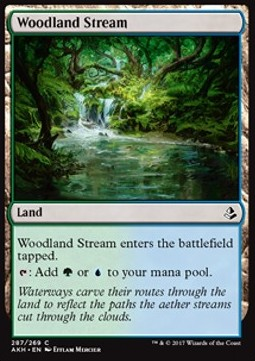 Arroyo forestal / Woodland Stream